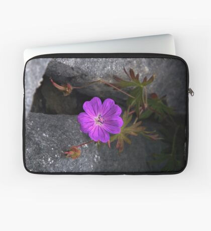 Bloody Cranesbill, Dun Aengus, Inishmore Laptop Sleeve