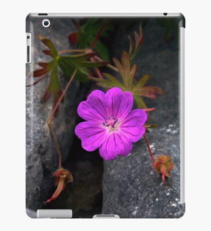 Bloody Cranesbill, Dun Aengus, Inishmore iPad Case/Skin