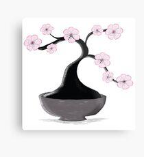 Kirschblüten-Bonsai Metallbild
