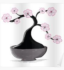 Kirschblüten-Bonsai Poster
