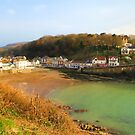 Combe Martin painted by shalisa