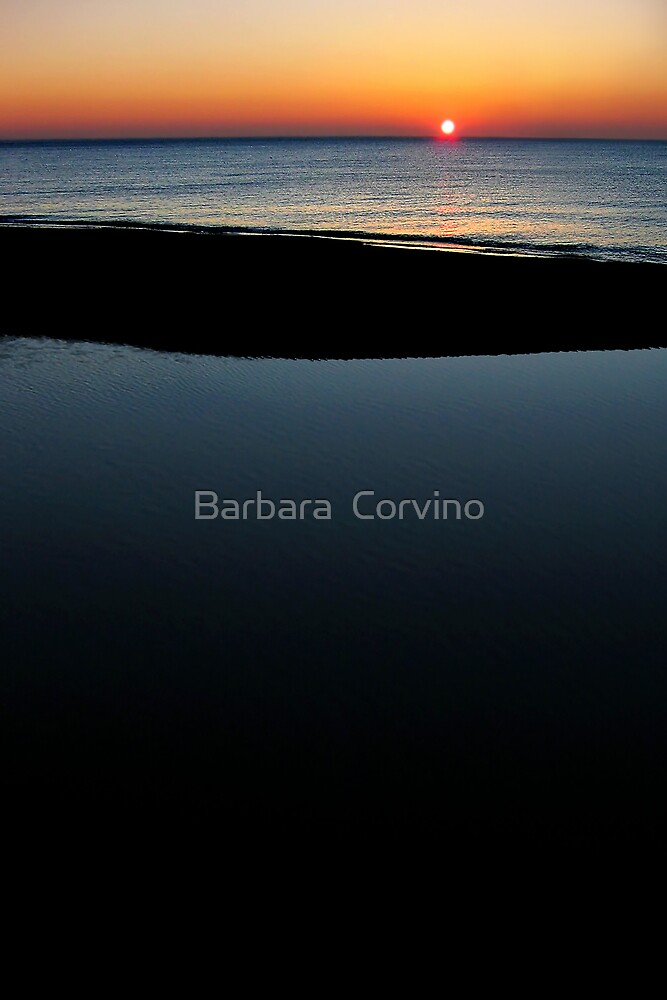 Deep blue by Barbara  Corvino