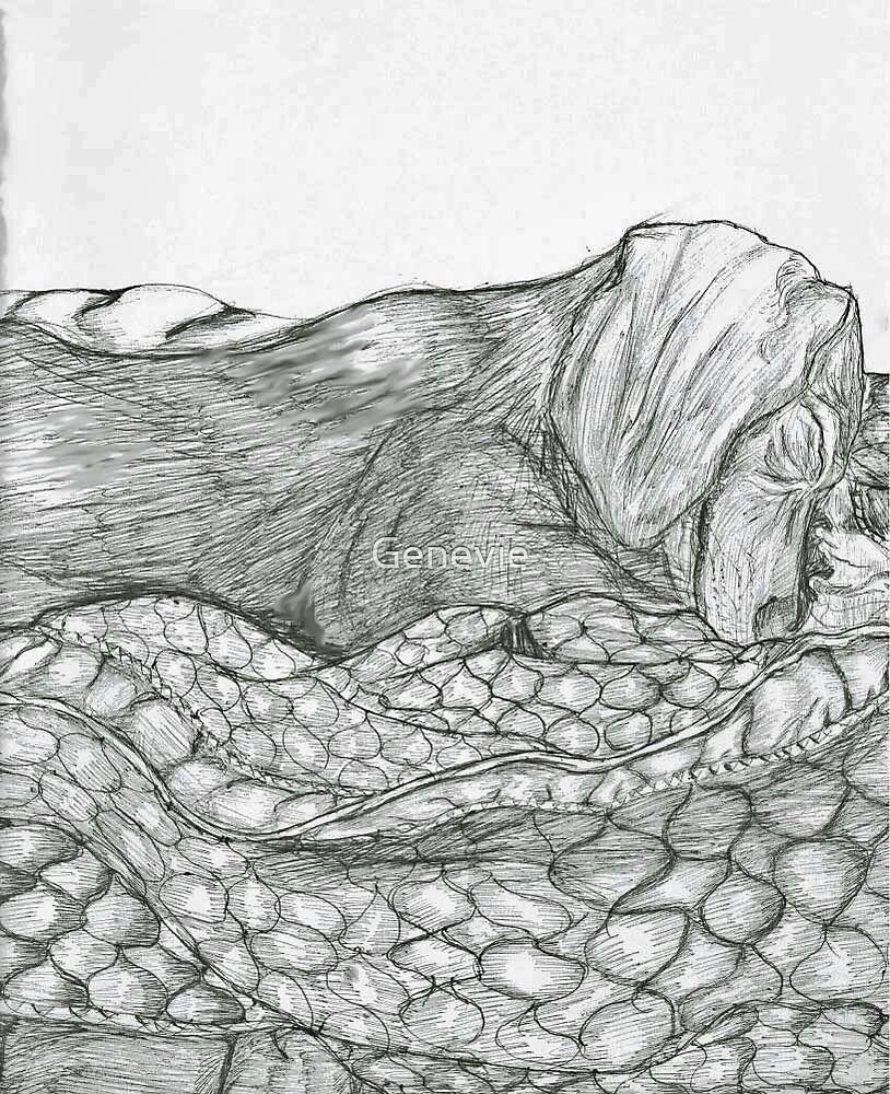 Schotze Sleep by Genevie