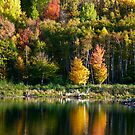 Autumn Panorama by Christopher Bookholt