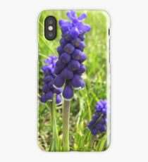Lupins in the sun  iPhone Case