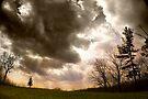 Big Sky, Little Tree by believer9