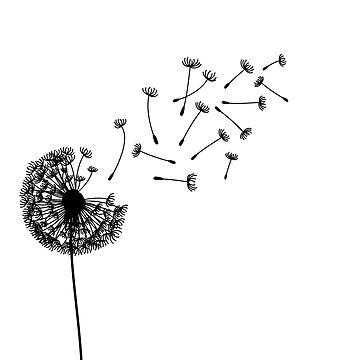 Make a wish by bsilvia