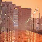Foggy Boardwalk by AnneDB