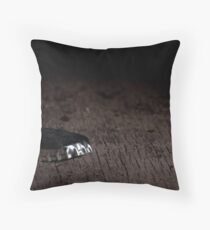 Things that were left behind. VI. Throw Pillow