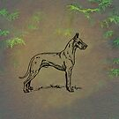 Great Dane by David Dehner