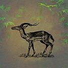 Impala by David Dehner