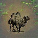 Camel by David Dehner
