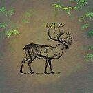 Caribou by David Dehner