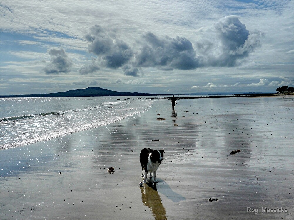 All this is mine says Ollie the Collie.....................! by Roy  Massicks