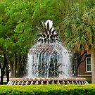 Waterfront Park - Charleston by ctheworld