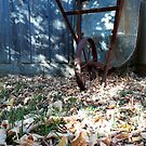 Old wheelbarrow with autumn leaves by Victoria McGuire