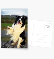 Wave Postcards