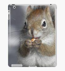 Food - Glorious Food iPad Case/Skin