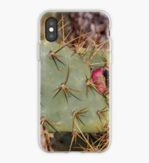 Opuntia prickly pear cactus with thorns and fruits, prickly close up iPhone Case
