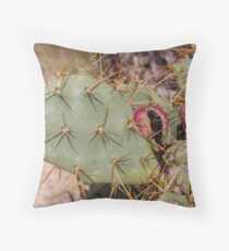 Opuntia prickly pear cactus with thorns and fruits, prickly close up Throw Pillow