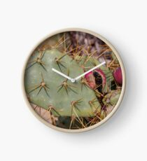 Opuntia prickly pear cactus with thorns and fruits, prickly close up Clock