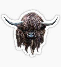 Scottish 'Heilan Coo' Sticker