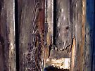Barn Siding by Aaron Campbell
