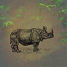 Rhinoceros by David Dehner