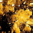 Golden Geode by SexyEyes69
