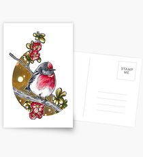 Red-capped robin Postcards