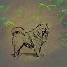 Samoyed by David Dehner