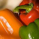 Sweet Peppers by WandaKrack