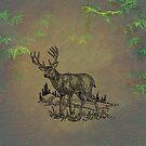 Whitetail Buck by David Dehner