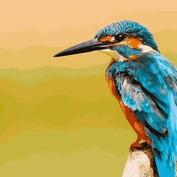 Kingfisher by ShaneReid2
