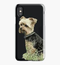 Dog | Portrait fo Guinness | Yorkie | Pets | Dogs iPhone Case/Skin
