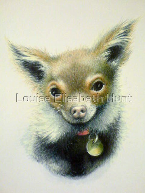 Bert the Flirt by Louise Elisabeth Hunt