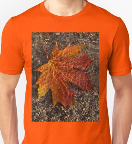 Colors and Patterns  T-Shirt