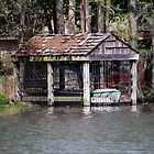 Canoe Shed by Cynthia48