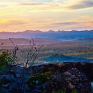 Chisos Mountain Sunset  by Cathy Jones