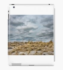 Sandy dune grass with stormy sky. iPad Case/Skin