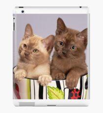 Cat duo or cat coffee iPad Case/Skin