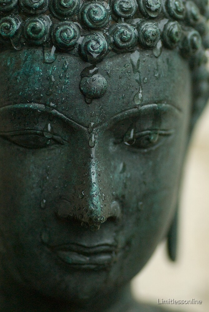 Buddha in the Rain by Limitlessonline