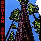 Jedediah Smith Redwoods State Park Vintage Travel Decal by hilda74