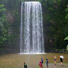 Millaa Millaa Falls, Queensland by Gail Mew