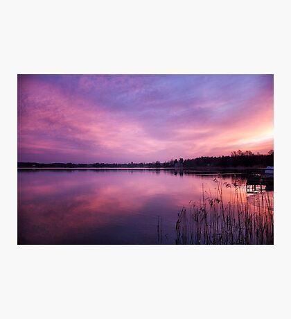 Dawn flight Photographic Print