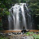 Ellinjaa Falls, Queensland by Gail Mew