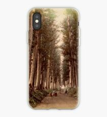 Imaichi Nikko Road, Japan iPhone Case