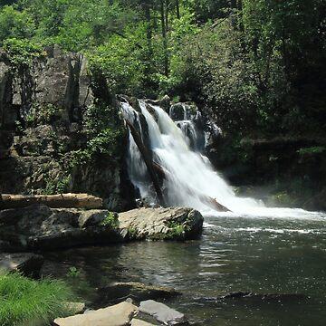 Abrams Falls by metrognome