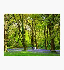 Never Too Old - to Play Amongst Bluebells Photographic Print
