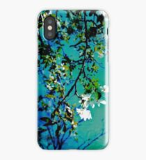 Spring Synthesis IIV iPhone Case